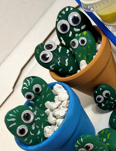 At Home Pet Rock Cactus Kit
