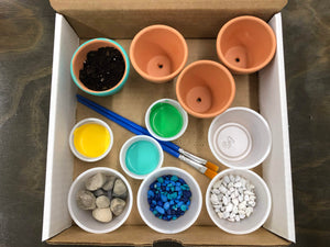 At Home Mini Garden Kit - Creative Art Bar