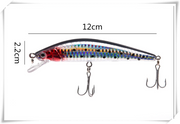 USB Rechargeable LED Twitching Fish Lure