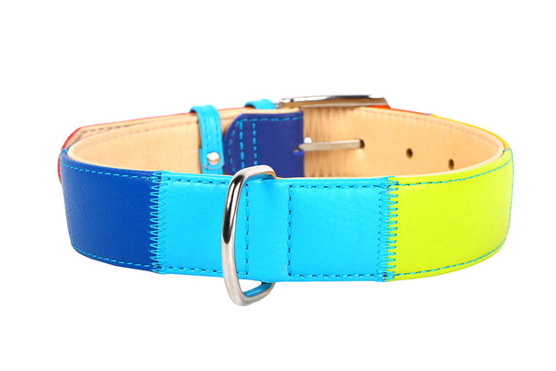 Collar Glamour Leather Rainbow Collar