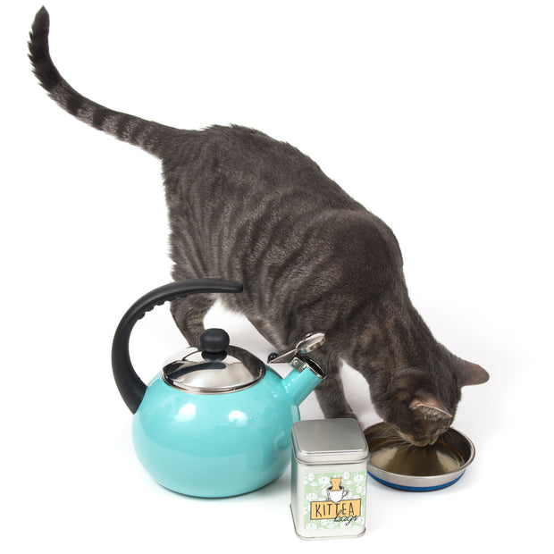 PetWinery Pet Tea