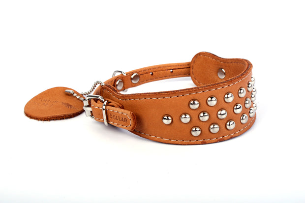 Collar Soft, Two Buckle Leather Collar