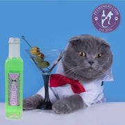 PetWinery Pet Martini