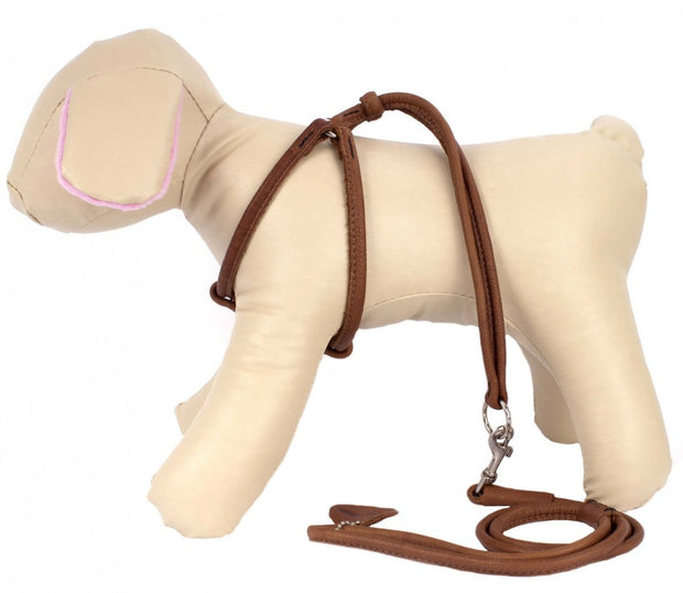Collar Soft Leather Harness and Leash Combo
