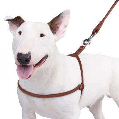 Collar Soft Round Leather Harness