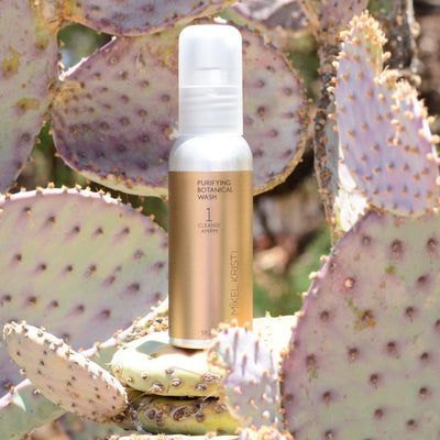 Purifying Botanical Wash 60ml photographed on a Prickly Pear Cactus. Product is by Mikel Kristi Skincare, based in the Arizona desert. This product is Step 1: Cleanse, and comes in a 60ml aluminum pump bottle with metallic gold colored label.
