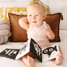 Load image into Gallery viewer, Baby's First Soft Book
