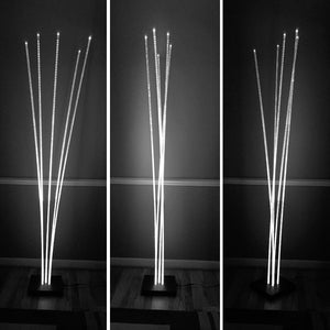 Ceorfan: LED Floor Lamp