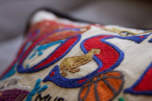 Boston Hand-Embroidered Pillow - catstudio