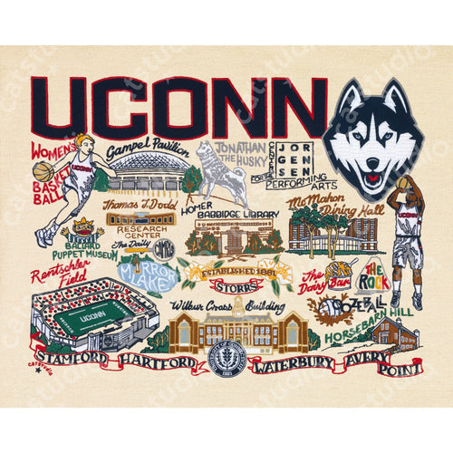 Connecticut, University of Collegiate Fine Art Print - catstudio