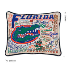 Load image into Gallery viewer, Florida, University of Collegiate XL Hand-Embroidered Pillow - catstudio