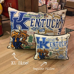 Florida, University of Collegiate XL Hand-Embroidered Pillow - catstudio