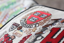 Load image into Gallery viewer, Harvard University Collegiate Embroidered Pillow - catstudio