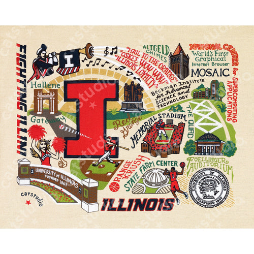 Illinois, University of Collegiate Fine Art Print Art Print catstudio