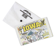 Load image into Gallery viewer, Iowa, University of Collegiate Dish Towel - catstudio