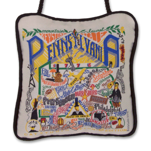 Pennsylvania Mini Pillow Pillow catstudio