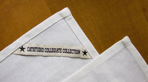 Pennsylvania, University of Collegiate Dish Towel - catstudio