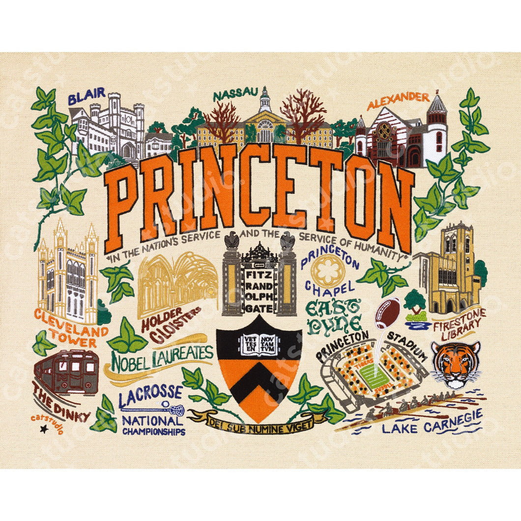 Princeton University Collegiate Fine Art Print - catstudio