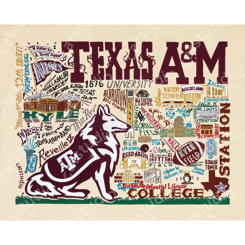Texas A&M University Collegiate Fine Art Print Art Print catstudio