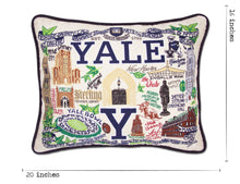 Load image into Gallery viewer, Yale University Collegiate Embroidered Pillow - catstudio