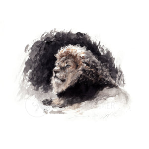 Male Lion 2 - Fine-Art Print (Square) - Carina Kramer - Fine Art, Fine Art Print, Wildlife Art/ Animal Painting