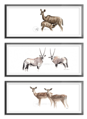 Warm Collection - Carina Kramer - Fine Art, Theme Collection, Wildlife Art/ Animal Painting