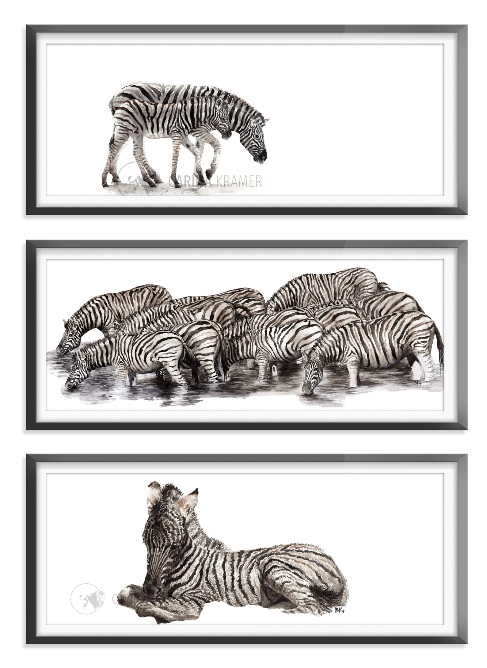 Zebra Collection - Carina Kramer - Fine Art, Theme Collection, Wildlife Art/ Animal Painting