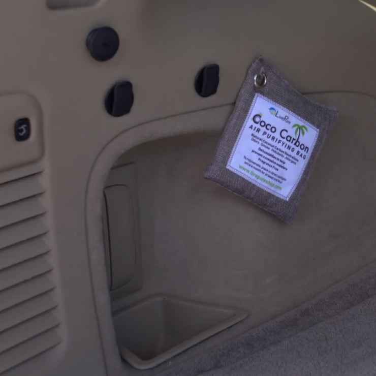 LivePure CocoCarbon Air Purifying Bag Hanging in Vehicle Trunk