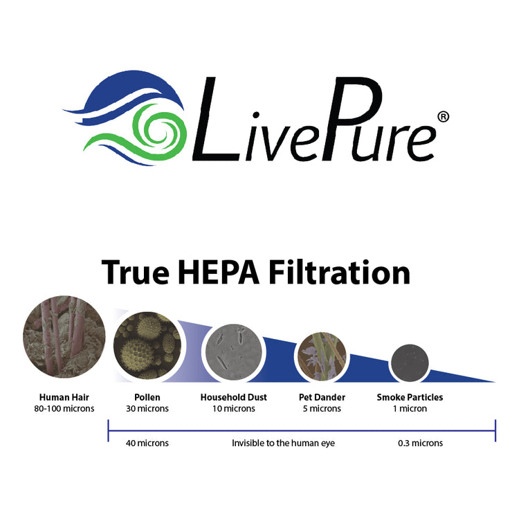 True HEPA Filter Particle Size Chart