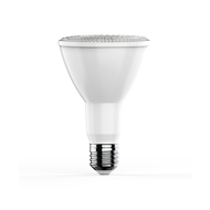 PAR LED Bulbs