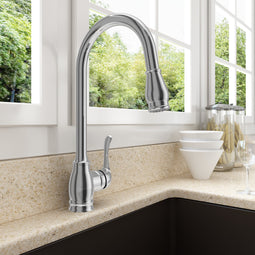 Belsena Pull-Out Spray Kitchen Faucet