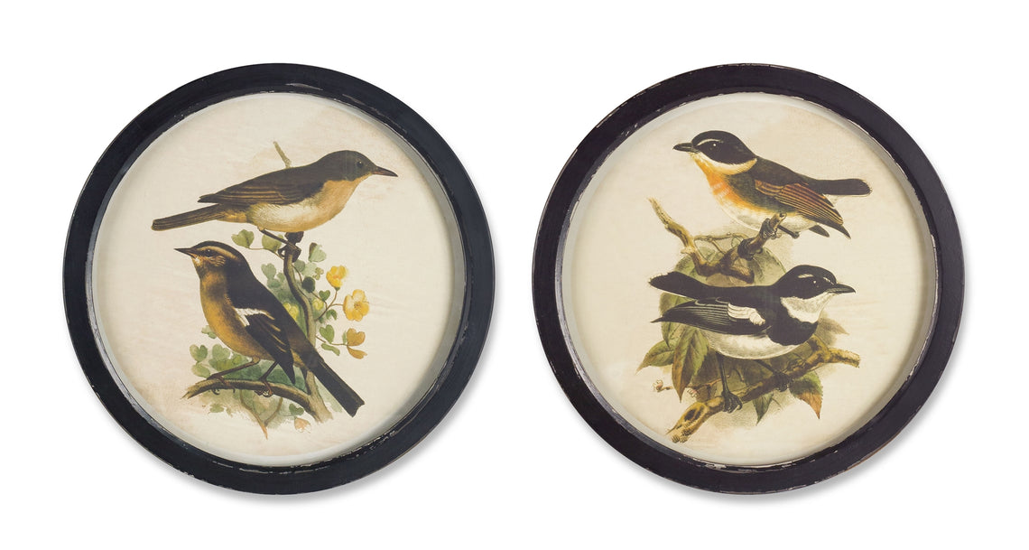 Framed Bird Print (Set of 2) 16.75