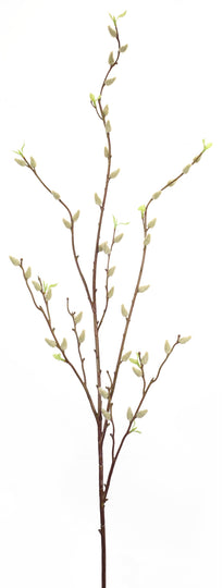 "Pussy Willow (Set of 12) 52.5""H Plastic"
