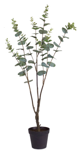 "30""""H Potted Eucalyptus - Polyester  - Set of 2"