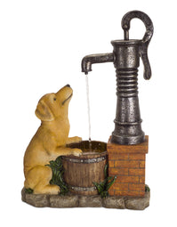 Water Pump and Dog Fountain 27.5