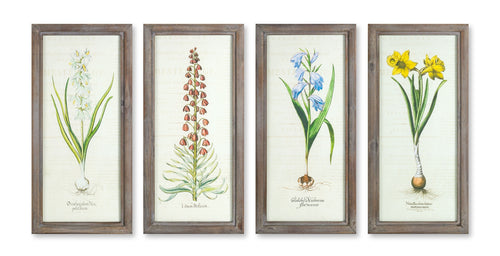 Framed Floral Print (Set of 4) 10.25