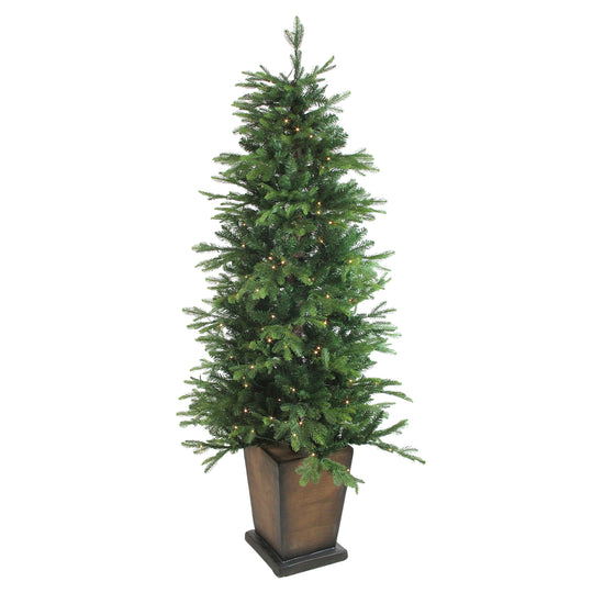 6' Pre-Lit Potted Oregon Noble Fir Artificial Christmas Tree - Clear LED Lights