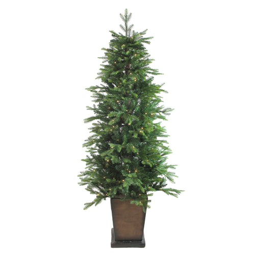 6' Pre-Lit Potted Oregon Noble Fir Artificial Christmas Tree - Warm White LED Lights
