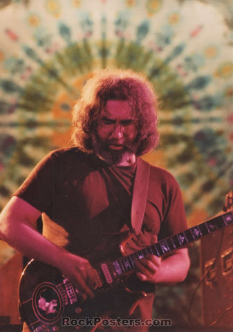 Grateful Dead - Jerry Garcia Live Concert Photograph - Mint