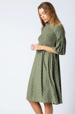 Daisy Olive Modest Casual Dress from A Closet Full of Dresses