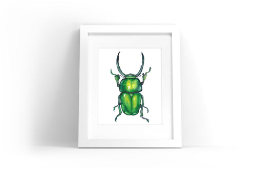 Green Beetle Watercolor Print