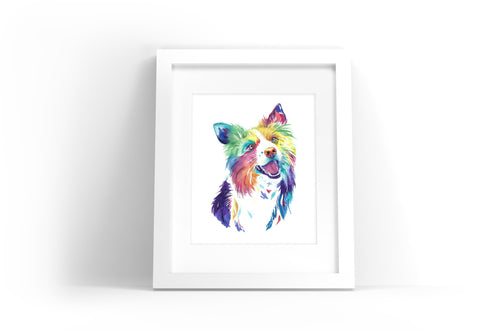 Border Collie Watercolor Print