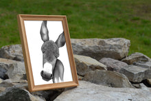 Load image into Gallery viewer, Donkey Watercolor Print