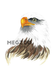 Bald Eagle Watercolor Print