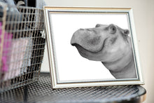 Load image into Gallery viewer, Hippo Watercolor Print
