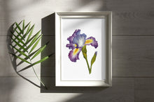 Load image into Gallery viewer, Purple Iris Watercolor Print