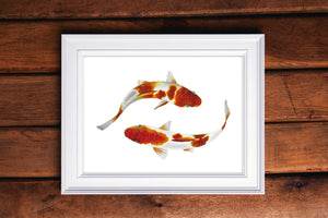 Koi Fish Watercolor Print