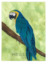 Load image into Gallery viewer, Macaw Watercolor Print