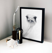 Load image into Gallery viewer, Ostrich Watercolor Print