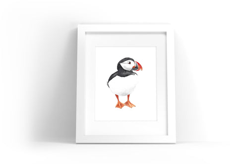 Puffin Watercolor Print